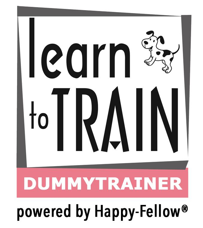 Logo learn to train